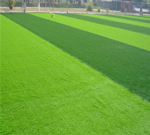 足球地坪5